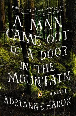 A Man Came Out of a Door in the Mountain By Harun, Adrianne